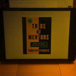 Tribe of Mentors: Tim, You Didn't Ask. But I Still Answered.